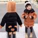 湖州織里產業帶童裝批發50元以下質量好又韓版的兒童衣服批發新款雙層加厚絨毛衣批發