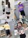 河南2019春季童裝批發市場哪里最便宜廠家直銷潮流新款韓版童裝批發網站一手童裝貨源