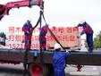 上海闸北区设备吊装电话