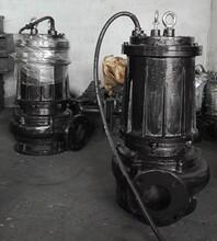 废水处理厂专用污水泵,杂质泵,废水泵