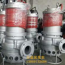 沉积物搅拌耐磨泥浆泵粉浆泵杂质泵