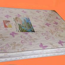 大自然棕榈床垫天然椰棕环保棕垫硬棕图片