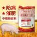 中豬預混料大豬飼料中草藥豬飼料添加劑一頓包郵