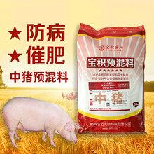 中猪预混料大猪饲料中草药猪饲料添加剂一顿包邮图片