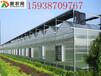PC阳光板温室大棚每平米造价多少钱