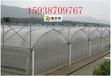 北京文洛式连栋PC阳光板温室设计