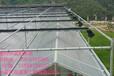温室电动遮阳网-A型齿轮齿条外遮阳系统