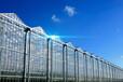 寧夏光伏發電太陽能溫室大棚建設
