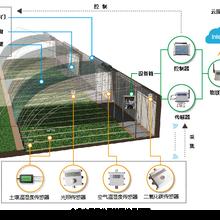 甘肃平凉温室农业大棚气象土壤监测物联网系统图片