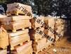 廣州市荔灣區高價求購庫存積壓塑料助劑