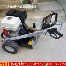 生铁铸件清洗机铸件除砂清洗机汽油式高压清洗机275巴清洗机图片