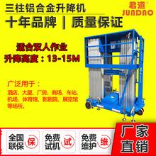 14米双人加强型三柱式升降机图片