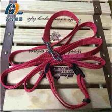 北京闪光宠物带供货商专业生产闪光宠物带百玲供应