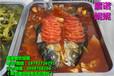 万州烤鱼技术加盟到哪家学纸包鱼技术随到随学