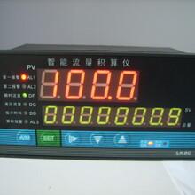 广东流量仪表补偿流量积算仪XSJB/A-HB1V0L1W4Y1的详细资料图片