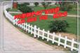 池州美化护栏厂、PVC草坪护栏、塑钢护栏厂家