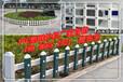 宣城泾县草坪护栏厂家,泾县PVC绿化栅栏,泾县PVC塑钢护栏质量有保证