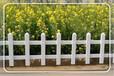 安庆岳西县草坪围栏,岳西县PVC绿化栅栏,岳西县塑钢护栏厂家