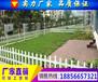 江苏扬州PVC绿化围栏扬州PVC绿化围栏低价促销