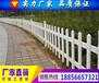 六安PVC围墙护栏厂家直销-批发PVC草坪绿化护栏