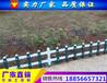 铜陵绿化护栏厂铜陵塑钢围墙护栏厂铜陵PVC草坪护栏厂家
