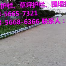 崇仁县塑钢护栏、pvc护栏的用途图片
