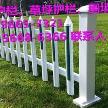 平阳县PVC草坪护栏0花池围栏厂家批发图片