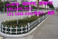 晉江市草坪綠化圍欄廠家報價低價
