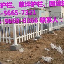 利川市绿化护栏、草坪护栏价格行情图片