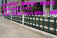 丽水市pvc栏杆草坪护栏网优秀厂家生产供应