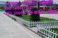 安溪縣塑鋼護欄-綠化柵欄圍欄生產企業批發