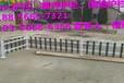 台州市pvc栅栏绿化护栏围栏当地实在厂家供货