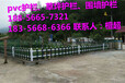 思明区塑钢护栏-绿化栅栏围栏厂家报价低价