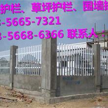 黎川县绿化护栏、草坪护栏指导报价图片