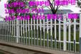 南安市綠化護欄柵欄調價匯總