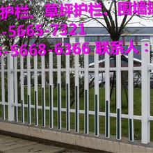 上栗县绿化护栏、草坪护栏哪家买图片
