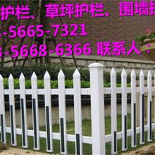 召陵区花坛护栏\pvc护栏厂商出售图片