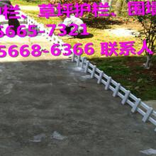 樟树市花坛护栏\pvc护栏代理商图片