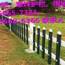 北塘区绿化护栏、草坪护栏行情图片