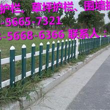 进贤县塑钢护栏、pvc护栏哪里买图片