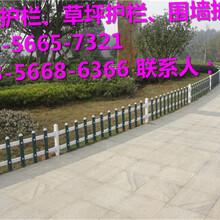 张湾区花坛护栏\pvc护栏月度评述图片