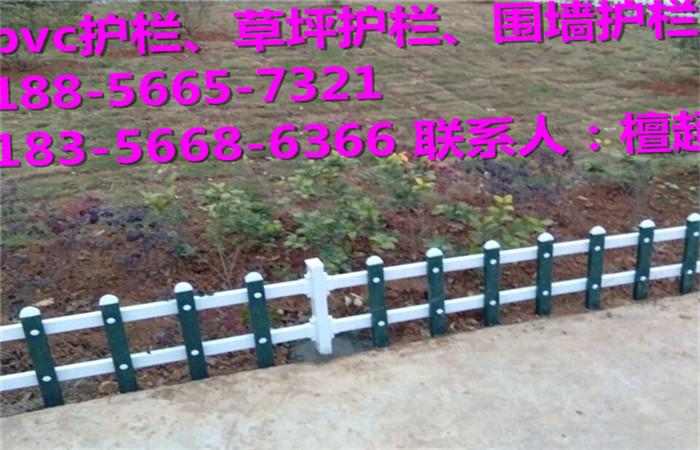 郴州市塑钢护栏厂家低价批发销售