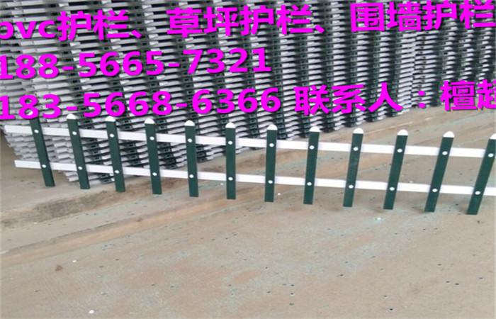 阜阳市绿化护栏、草坪护栏厂家供货