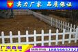 十堰市杰出的塑鋼圍欄草坪護欄價格