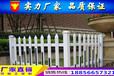 鄂州市優秀的草坪圍欄pvc護欄行情價格