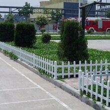 平顶山市舞钢市公园pvc绿化护栏·护栏的颜色好看图片
