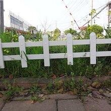郑州市惠济区花园绿化护栏、花坛围栏·护栏的价格就低图片