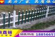 铂金合肥市绿化护栏电话