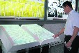 四川成都虚拟电子翻书,互动投影电子翻书,空中隔空翻书