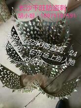 长沙千旺防盗刺直径240.,24排刺齿